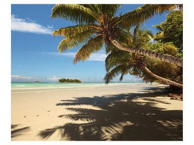Anse Volbert beach, Praslin Island, Seychelles--Art Print