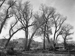 At Taos Pueblo National Historic Landmark, New Mexico, ca. 1941-1942 by Ansel Adams