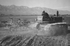 Benji Iguchi Driving Tractor in Field by Ansel Adams