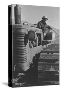 Benji Iguchi on Tractor by Ansel Adams