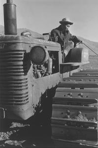 Benji Iguchi on Tractor by Ansel Adams