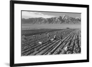 Farm, Farm Workers, Mt. Williamson in Background by Ansel Adams
