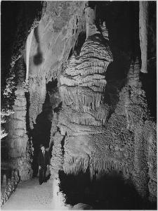Formation At The 'Hall Of Giants' In Carlsbad Cavern New Mexico.  1933-1942 by Ansel Adams