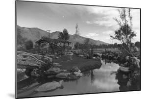 Pool in Pleasure Park by Ansel Adams