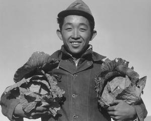 Richard Kobayashi, Farmer with Cabbages by Ansel Adams