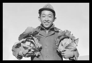 Richard Kobayashi, Framer with Cabbages by Ansel Adams