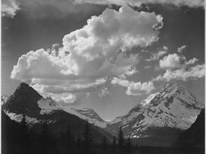 """Tops Of Pine Trees Snow Covered """"In Glacier National Park"""" Montana. 1933-1942 by Ansel Adams"""