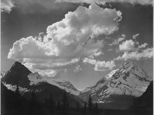 "Tops Of Pine Trees Snow Covered ""In Glacier National Park"" Montana. 1933-1942 by Ansel Adams"