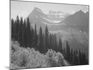 """Trees And Bushes In Foreground Mountains In Bkgd """"In Glacier National Park"""" Montana. 1933-1942 by Ansel Adams"""