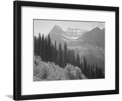 "Trees And Bushes In Foreground Mountains In Bkgd ""In Glacier National Park"" Montana. 1933-1942"