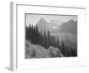 "Trees And Bushes In Foreground Mountains In Bkgd ""In Glacier National Park"" Montana. 1933-1942 by Ansel Adams"