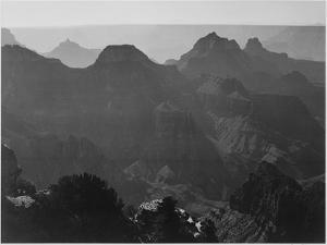 """View With Shrub Detail In Foreground """"Grand Canyon National Park"""" Arizona. 1933-1942 by Ansel Adams"""