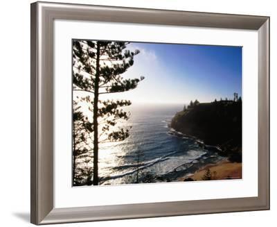 Anson Bay with Norfolk Island Pines, Australia-Holger Leue-Framed Photographic Print