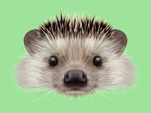 Illustrated Portrait of Hedgehog. Cute Head of Wild Spiny Mammal on Green Background. by ant_art