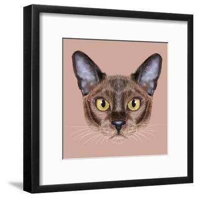 Illustrated Portrait of Burmese Cat.