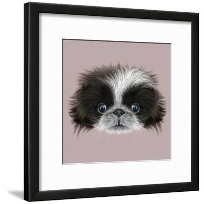 Illustrated Portrait of Pekingese Dog