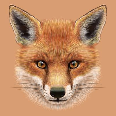 Illustrative Portrait of a Red Fox. the Cute Fluffy Face of Forest Fox. by ant_art19