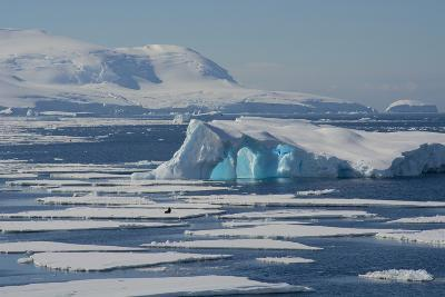 Antarctica. Antarctic Circle. the Gullet. Iceberg and Ice Floes-Inger Hogstrom-Photographic Print