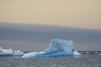 Antarctica. Brown Bluff. Bright Blue Iceberg-Inger Hogstrom-Photographic Print