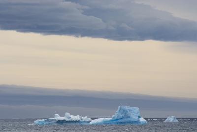 Antarctica. Brown Bluff. Bright Blue Iceberg-Inger Hogstrom-Photographic Print
