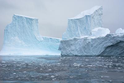 Antarctica. Charlotte Bay. Brash Ice and Icebergs-Inger Hogstrom-Photographic Print