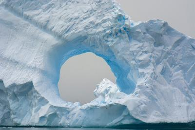 Antarctica. Charlotte Bay. Giant Iceberg with a Hole-Inger Hogstrom-Photographic Print