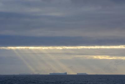 Antarctica. Crepuscular Rays Shining Down onto Tabular Icebergs-Inger Hogstrom-Photographic Print