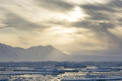 Antarctica. Near Adelaide Island. the Gullet. Ice Floes at Sunset-Inger Hogstrom-Photographic Print