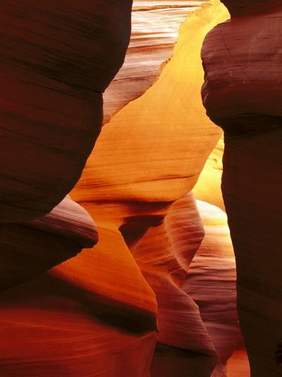 Antelope Canyon, Sandstone Rock Formations Near Page, USA-Mark Hamblin-Photographic Print