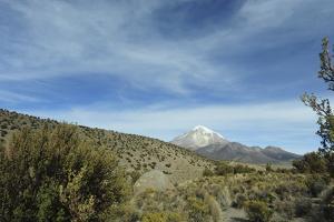 Arid Altiplano landscape, Sajama National Park, Bolivia by Anthony Asael
