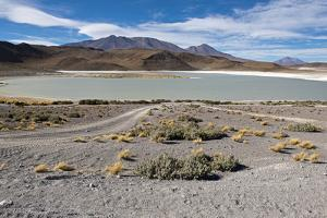 Bolivian desert, Bolivia. Lakes and mountains. by Anthony Asael