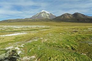 Snowcapped volcano Sajama, Sajama National Park, Bolivia by Anthony Asael