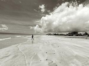 White Sand Beach, Ilha De Itamaraca, Pernambuco, Brazil by Anthony Asael