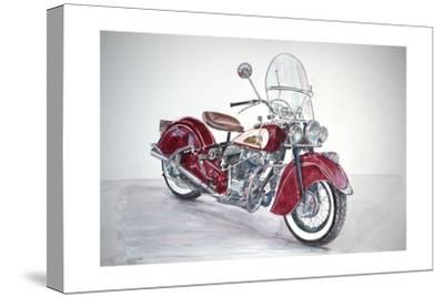 Indian Motorcycle, 2009