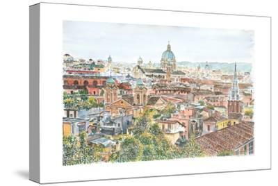 Rome, Overview from the Borghese Gardens, 2013