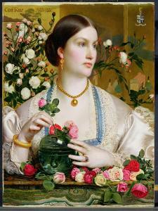 Grace Rose, 1866 (Oil on Panel) by Anthony Frederick Augustus Sandys