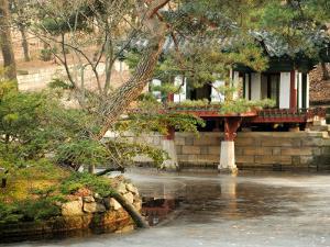 Biwon Garden at Changdeokgung, Gwanghwamun, Seoul, South Korea by Anthony Plummer