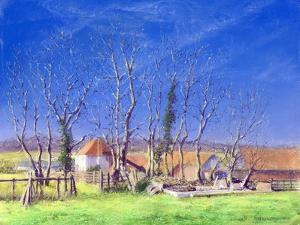 Brockwell Farm, 2005 by Anthony Rule