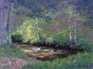 Forest Stream, 2002 by Anthony Rule