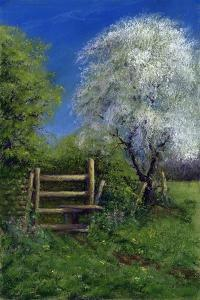 Springtime by the Stile, 2013 by Anthony Rule