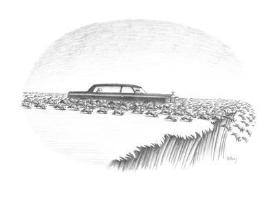 Herd of lemmings are running off cliff, one is being chauffeured in a limo? - New Yorker Cartoon