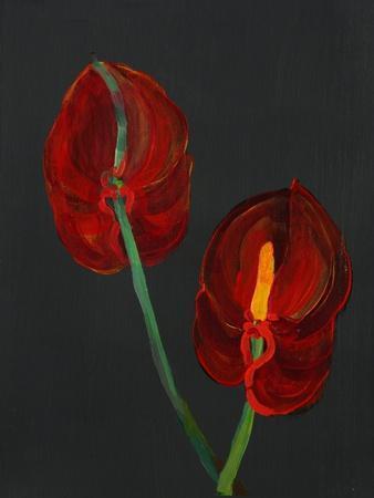 https://imgc.artprintimages.com/img/print/anthurium-heart-flower-2008_u-l-pjflwz0.jpg?p=0