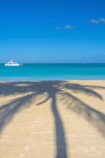 Antigua, Jolly Bay Beach, Palm Trees Casting Shadows-Alan Copson-Photographic Print