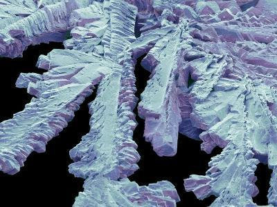 Antihistamine Drug Crystals, SEM-Steve Gschmeissner-Photographic Print