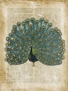 Antiquarian Birds V