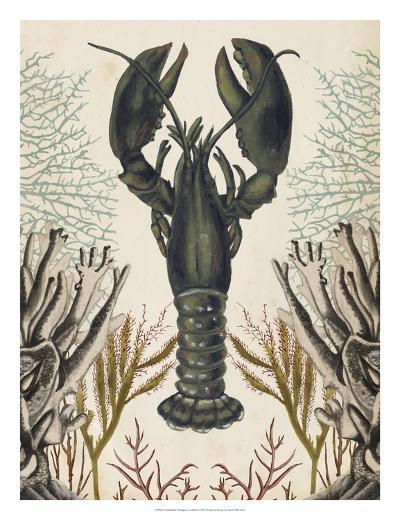 Antiquarian Menagerie - Lobster-Naomi McCavitt-Giclee Print