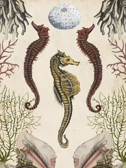 Antiquarian Menagerie - Seahorse-Naomi McCavitt-Art Print