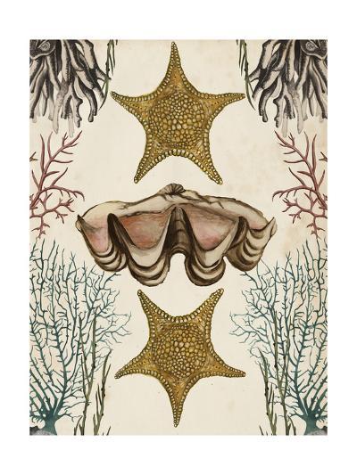 Antiquarian Menagerie - Starfish-Naomi McCavitt-Art Print