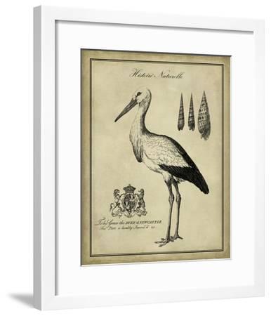 Antiquarian Stork-Vision Studio-Framed Art Print