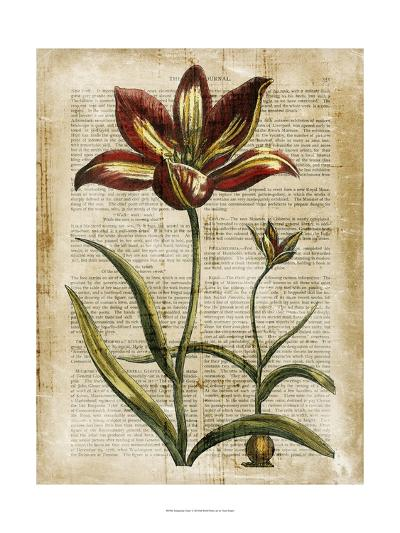 Antiquarian Tulips I--Art Print
